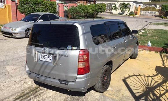 Buy Used Toyota Succeed Silver Car in Kingston in Kingston